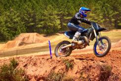 Yamaha YZ250 Monster Edition 2022 motocross (1)