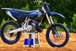Yamaha YZ250 Monster Edition 2022 motocross (11)