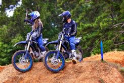 Yamaha YZ250 Monster Edition 2022 motocross (22)