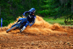 Yamaha YZ250F Monster Edition 2022 motocross (11)