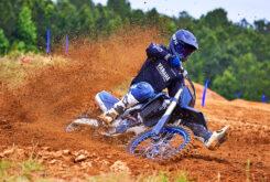 Yamaha YZ250F Monster Edition 2022 motocross (12)