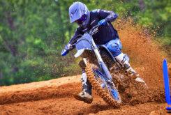 Yamaha YZ250F Monster Edition 2022 motocross (4)