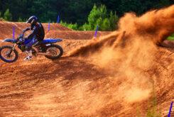 Yamaha YZ250F Monster Edition 2022 motocross (6)