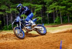 Yamaha YZ450F Monster Edition 2022 motocross (3)