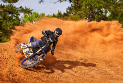 Yamaha YZ450F Monster Edition 2022 motocross (8)