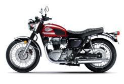 Kawasaki W800 2022 (19)