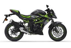 Kawasaki Z125 2022 7