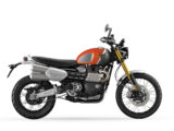 Triumph Scrambler 1200 XE Gold Line 2022 estudio 6
