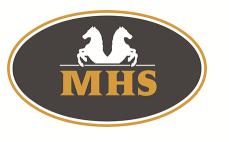 Minihorseshop sale tot 25% korting