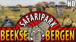 Entree tickets Safaripark Beekse Bergen voor €11,50
