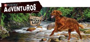 De 1e 3000 deelnemers gratis verpakking Purina Adventuros Nuggets hondensnack