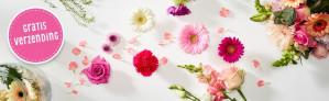 Gratis verzending op bloemen