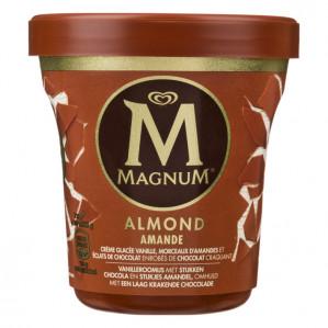 Alle soorten Magnum Pint 1+1 Gratis