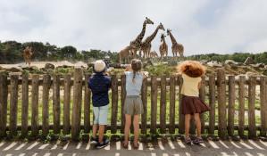 Entreeticket Safaripark Beekse Bergen voor €14,95