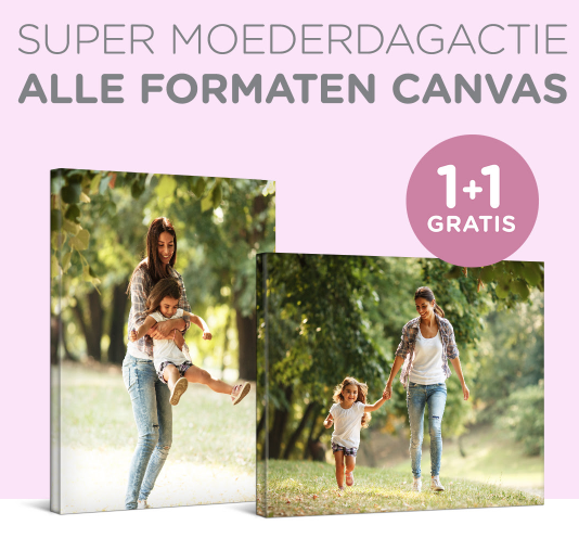 Canvas 1+1 Gratis dmv code