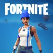 Fortnite Battle Royale: PlayStation®Plus Celebration Pack Gratis