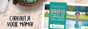 Gratis Dagje Wellness