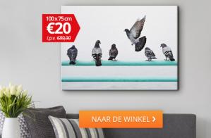 €20 Foto op Canvas 100x75cm