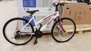 Mountainbike voor €35