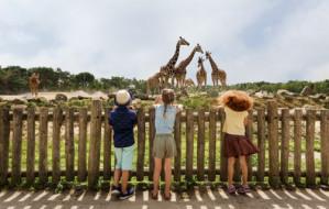 Tickets voor Dierenpark Safaripark Beekse bergen voor 13,95 euro