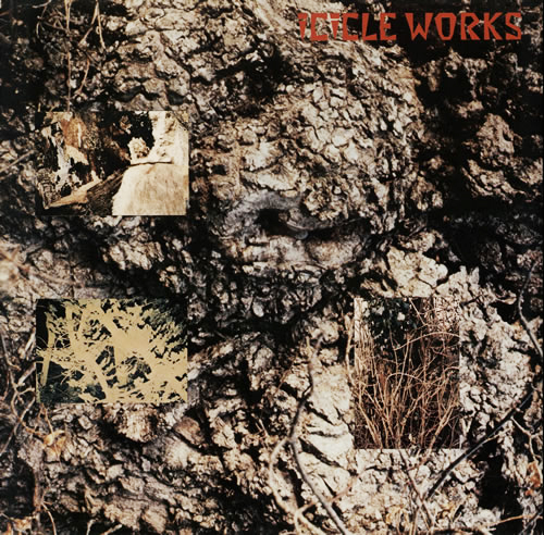The Best Of The Icicle Works - Expanded