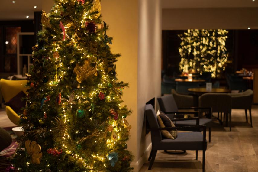 Christmas tree clandeboye lodge