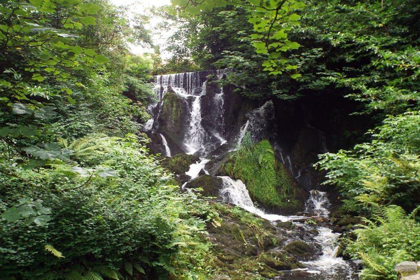 crawfordsburn-country-park, waterfall