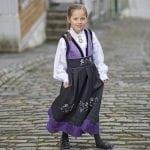 Birksbreen_lilla_1