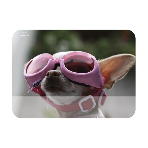 CoolStuff_dog-1_SMALL