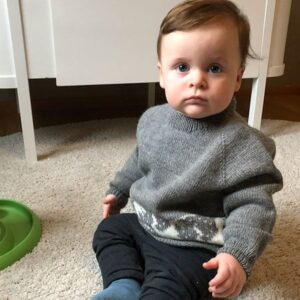Bluum strikk - Dinosaur-genseren i Pure Eco Baby Wool