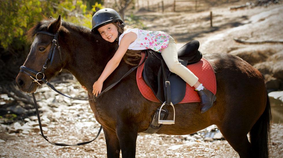 Flere ridesentre guider barn og voksne på alt fra dagsturer til lengre overnattingsturer i fjellet. Illustrasjonsfoto: Shutterstock