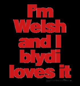 I'm Welsh and I Blydi Loves It