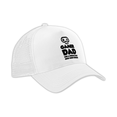 Gamer Dad Cap
