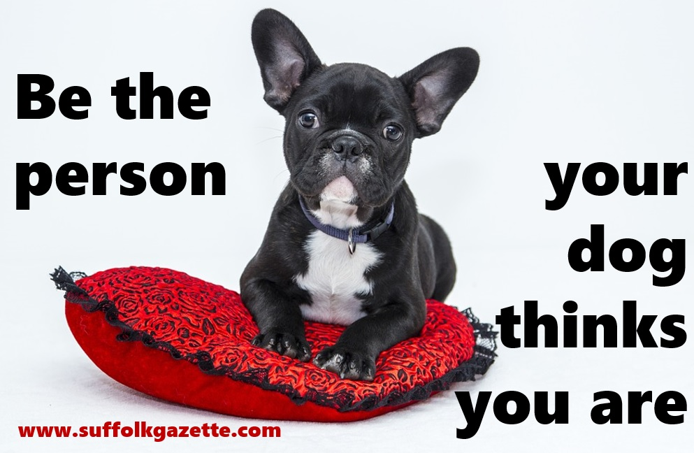 Be the person your dog thinks you are>