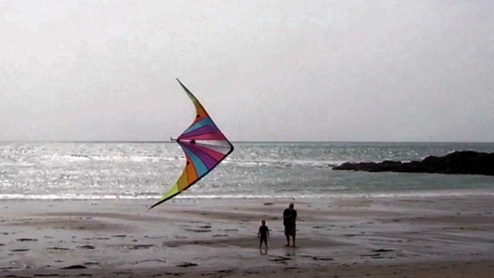 Kite on the Beach>