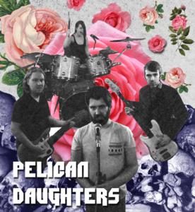 PelCorp - Merchandising the Pelican Daughters