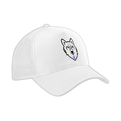 caps/hats with the JV wolf logo