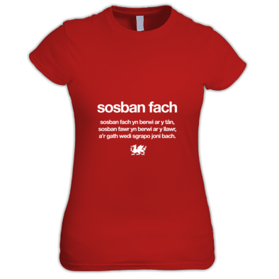 Sosban Fach - Wales 6 Nations Rugby Union - Women's tshirt