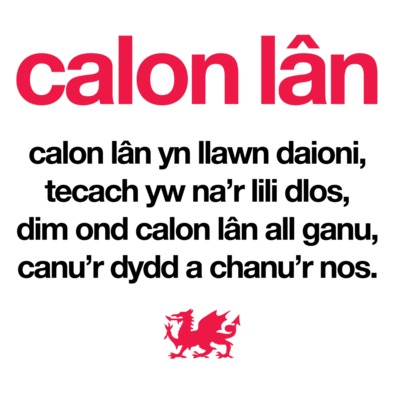 Calon Lan - Wales 6 Nations Rugby Union - Caps