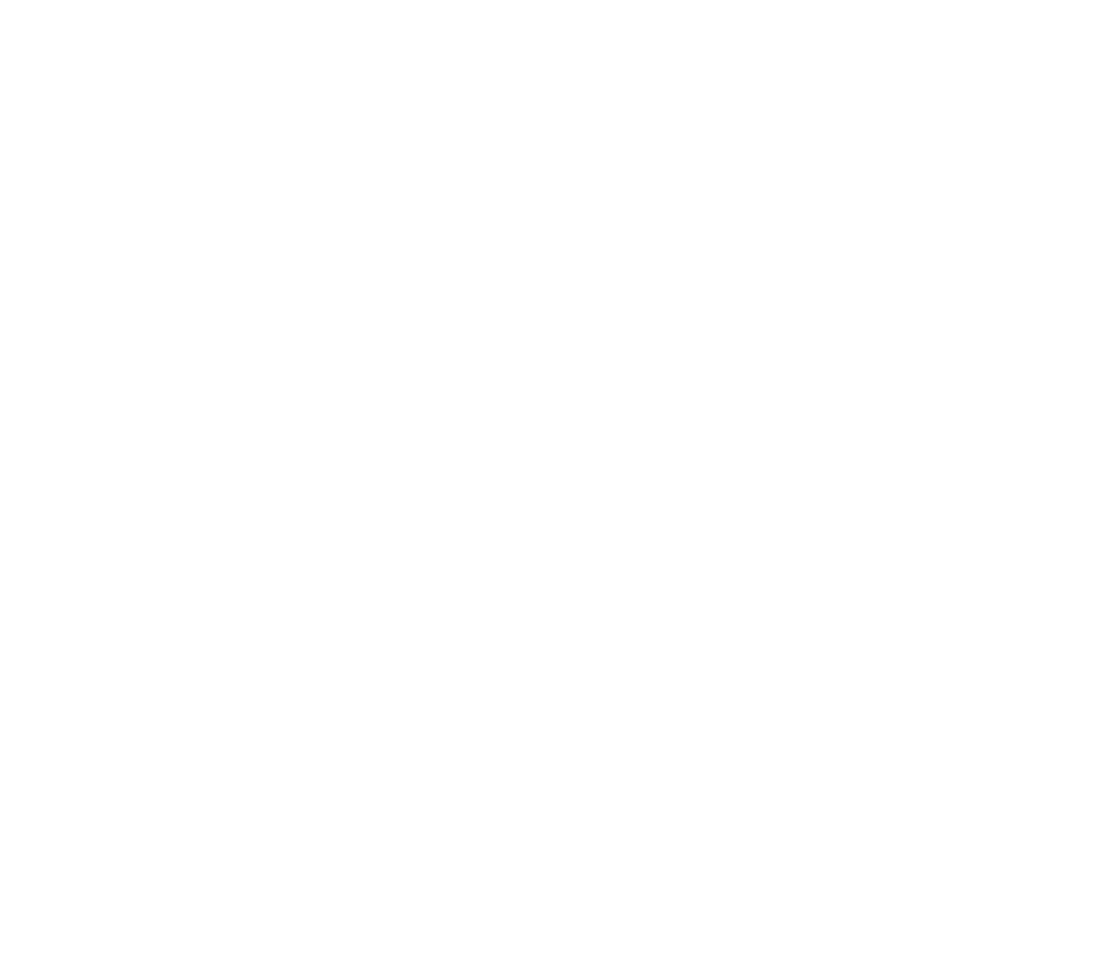 Wales Rugby - The Dragon Awakens - Hoodies>