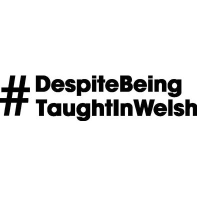 Despite Being Taught In Welsh - Hoodies>