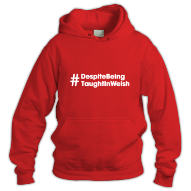 Despite Being Taught In Welsh - Hoodies