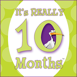 It's Really 10 Months