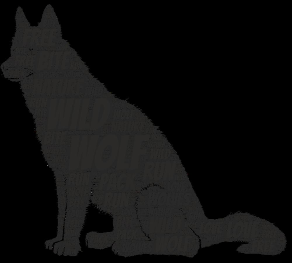 Wild Wolf>