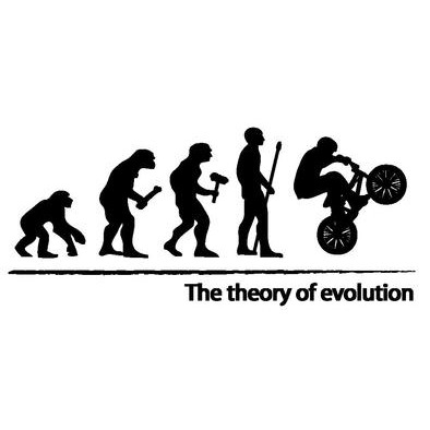 The theory of evolution (BMX)>