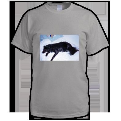 mojo shirt