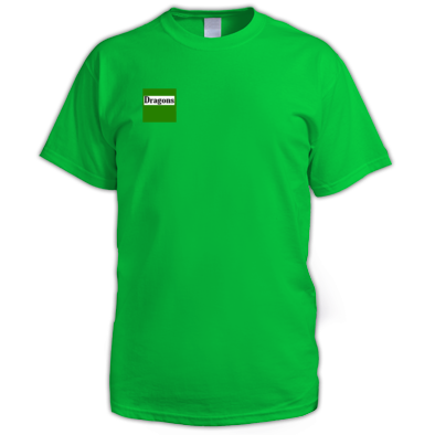 Seb request for dragons sportsday shirt