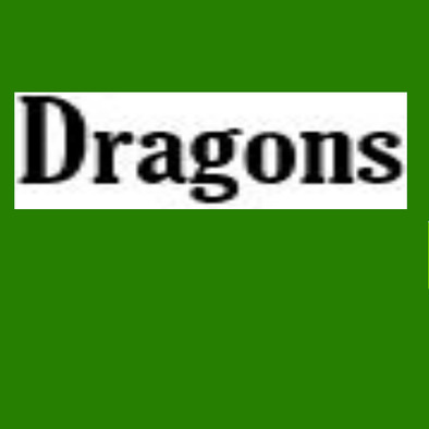 Seb request for dragons sportsday bag>
