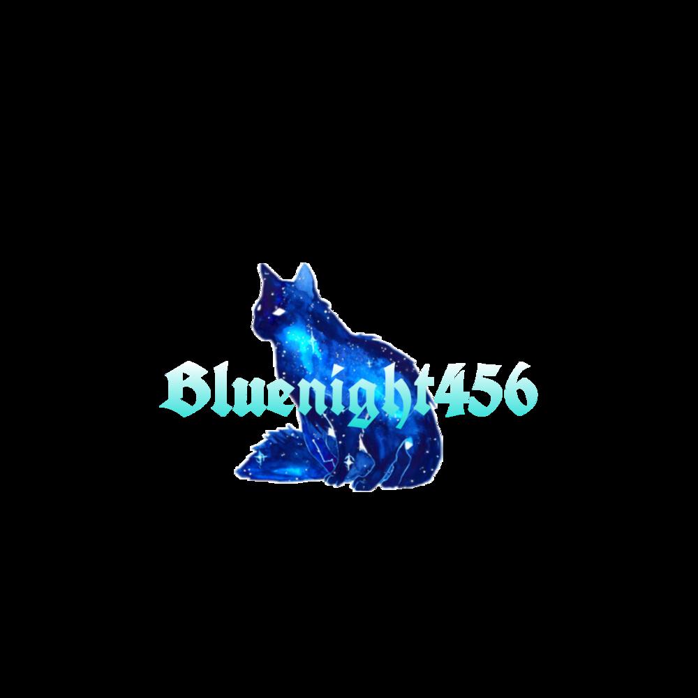 Bluenight456 Logo>