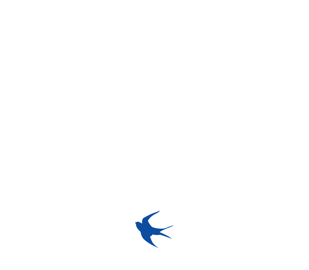 Cardiff City FC - Back in Blue - Men's T-shirts>
